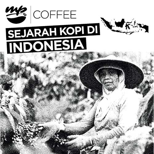 mayaka-premium_mp-coffee-and-cook_mp-coffee_mp-cook_post_instagram_sejarah-kopi-di-indonesia